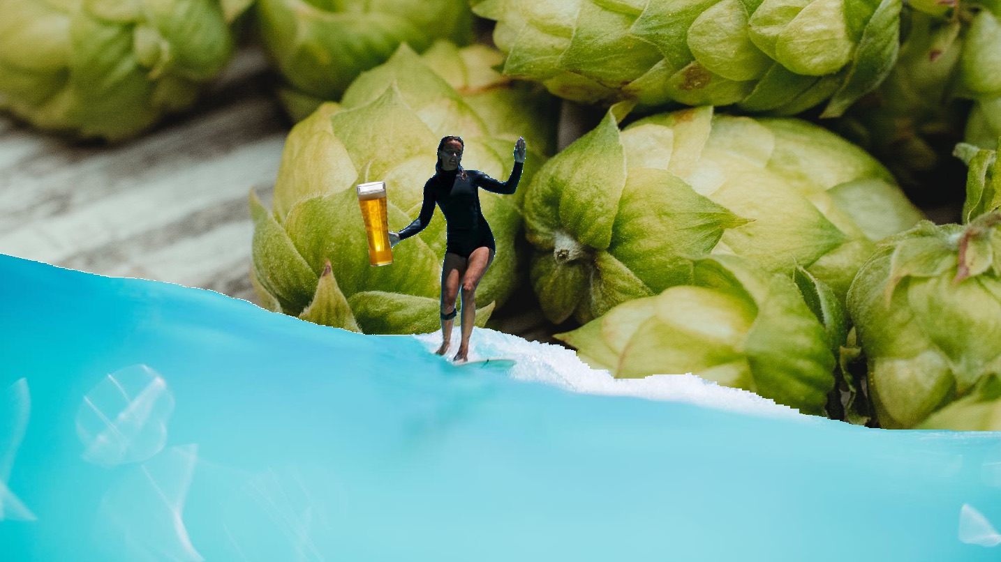 artist image of wave pool, beer and hops